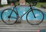 Classic Colnago C40 Team Lamprey 55 for Sale