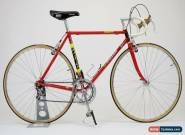 Vintage Raleigh SBDU Bicycle 1985/6 with Campagnolo Super Record & Delta Brakes for Sale