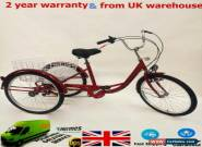 "24"" Adult Tricycle 3 Wheel 6-Speed Seniors Shopping Cargo Bicycle Trike+Lamp HOT for Sale"