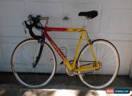 CANNONDALE BICYCLE R800  for Sale