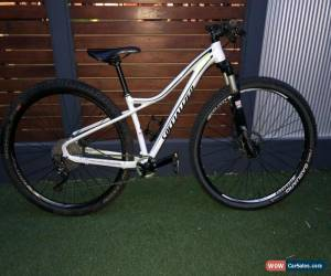 Classic Specialized Fate Elite hardtail XC bike for Sale