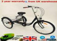 "24"" Adult Tricycle 6 Speed 3 Wheel Bicycle Trike Cruise Basket + Lamp NEW for Sale"
