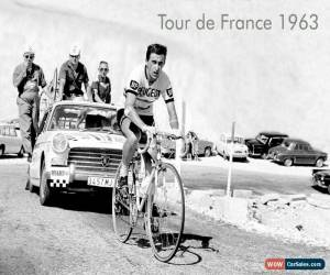 Classic Tom Simpson Tour 1964 A3 poster Campagnolo Record Super Holdsworth Bianchi for Sale