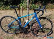 Pinnacle Dolomite disc for Sale