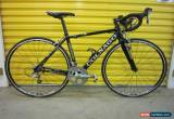 Classic ROADBIKE COLNAGO MOVE.ALLOY/CARBON FRAME.STYLISH ITALIAN RACING MACHINE.50 for Sale