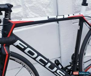 Classic Focus cayo Ultegra Di2 Carbon Fiber Road Bike  for Sale