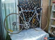 "Vintage STANDISH Triathlon Bike 21.5"" Lite Steel Frame 12 Speed made in Japan for Sale"