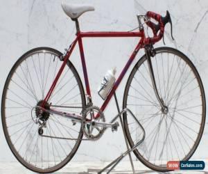 Classic Le Taureau Vuelta Bike Full Chromed Columbus Tubing LowMan  for Sale