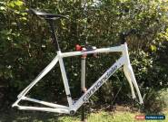 2016 Cannondale Synapse Alloy Frameset 56 for Sale