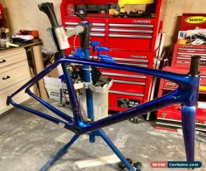 Classic 2017 54cm Specialized Tarmac Expert Cameleon Frame/ Fork/ Seatpost Condition for Sale
