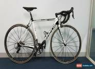 Focus Izalco Pro Ultegra 11 Speed Medium  for Sale