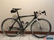 Rare Colnago Campagnolo Carbon E1 Road Bike 52cm - Post C50, Pre C60/C64 for Sale