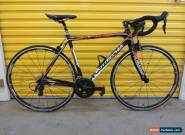 ROADBIKE BOTTECCHIA DUELLO.CARBON/ALLOY FRAME.ITALIAN RACING MACHINE.54 for Sale