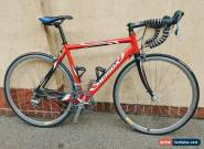 Merida Road Bike, 10 speed Carbon Forks. Train or Race for Sale