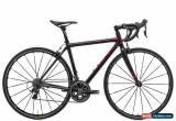 Classic 2010 Parlee Cycles Z3 Road Bike 48cm Carbon Shimano Dura-Ace 9000 Mavic Zipp for Sale
