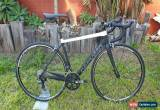 Classic Cervelo R3 Carbon Road Bike Ultegra Di2 Mavic Rotor for Sale