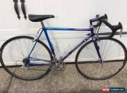 Landshark Road Shark 1994-1995 Reynolds 653 lugged Bicycle 53cm Campagnolo for Sale
