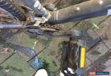 Classic One Neglected Jamis Bike for Sale