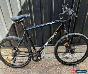 Classic Felt giant large size mountain bike with disc brakes, very good condition. for Sale