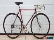 COLNAGO MASTER 1st. gen. vintage italian steel road bike CAMPAGNOLO C-RECORD for Sale
