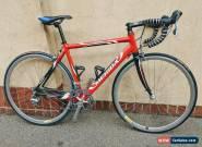 Merida Road Bike, 10 speed Carbon Forks. Great first bike! for Sale