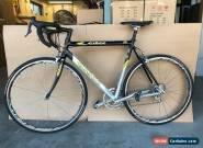 Legendary Ciocc Challenger Race Bike Excellent Condition  for Sale