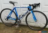 Classic Focus Cayo Carbon fiber Road Bike 54cm for Sale