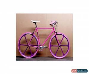 Classic Mango Bikes - Custom Single Speed Bicycle - Pink/Purple for Sale