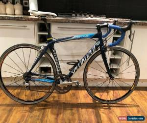 Classic Specialized Tarmac Expert Team Gerolsteiner Carbon Road Bike 54cm Medium Frame for Sale