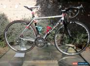 WILIER CAMPAGNOLO LAVADERO ALUMINIUM BIKE, EXC CONDITION, RIDES EXCELLENT, 20 SP for Sale