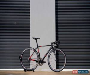 Classic Scapin Anouk 53.5cm for Sale