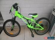 Giant XtC Junior 20 Mountain Bike for Sale