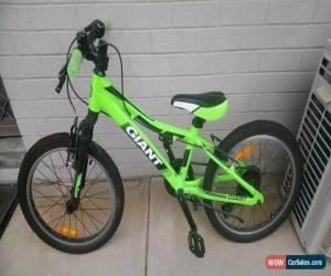 Classic Giant XtC Junior 20 Mountain Bike for Sale