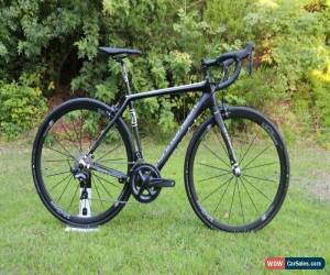 Classic NEW - 2017 Cannondale Synapse Carbon Hi-Mod Ultegra, Road Endurance Bike - 51cm for Sale