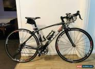 Cinelli Saetta Racer for Sale