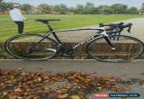 Classic Specialized Tarmac Elite SL4 Carbon Road Bike - Size 56cm - ULTEGRA - FULCRUM  for Sale