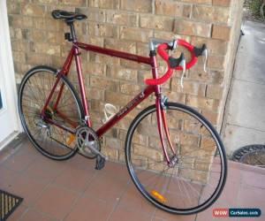 Classic **AVANTI PRO SERIES SHIMANO EXAGE 500EX, ALUMINIUM 62cm FRAME 14 spd ROAD BIKE** for Sale
