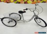 "24"" Adult Tricycle 6-Speed Bicycle Trike Cruise Basket + Lamp HOT!!! for Sale"