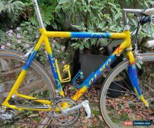 Classic Olmo/Campagnolo Corsa Aluminium Road Bike 52cm for Sale