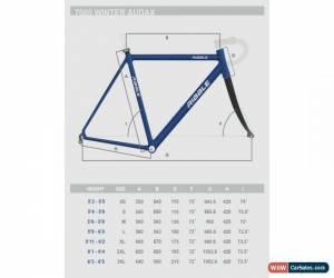 Classic Ribble 700c Road Bike - Audax/Winter/Fast Commuter (54CM) for Sale