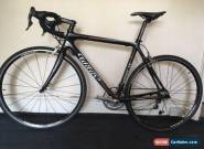 Wilier carbon Road Racing Bike Campagnolo Centaur Medium frame 54cm for Sale