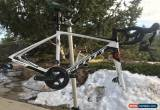 Classic Scott Addict 20 Disc 49cm Carbon Road Bike for Sale