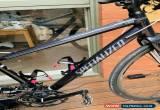 Classic Specialised Vita Ladies Flat bar Road Bike Size Small. SRAM 10 Spd 50/34 & 11/32 for Sale