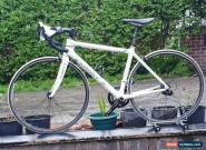 Planet x Carbon Fiber Road Bike  for Sale
