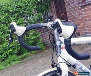 Classic Planet x Carbon Fiber Road Bike  for Sale