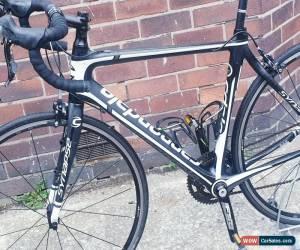 Classic Cannondale synapse Carbon fiber Road Bike 52cm  for Sale