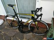 Boardman Carbon Road Bike - Spanking New - Large 55.5 for Sale