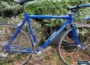 Pinarello/Campagnolo Sestriere Road Bike 52cm for Sale