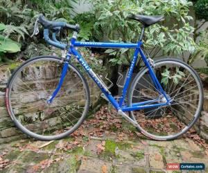 Classic Pinarello/Campagnolo Sestriere Road Bike 52cm for Sale
