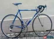 Gios Torino Compact Evolution Pro bike Campagnolo C Record 54 excellent Master  for Sale